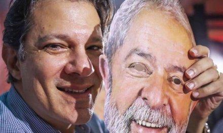 [Brasil] Haddad es oficialmente el candidato presidencial del PT
