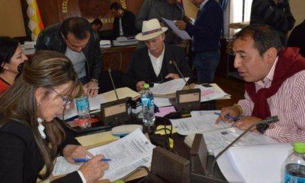 (Bolivia) De 20 candidatos al TSE al menos 15 son funcionarios públicos