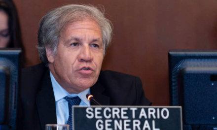 Luis Almagro busca la reelección como secretario general de la OEA