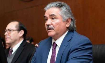(Ecuador) Misión de la OEA cuestiona validez en algunos puntos de consulta popular