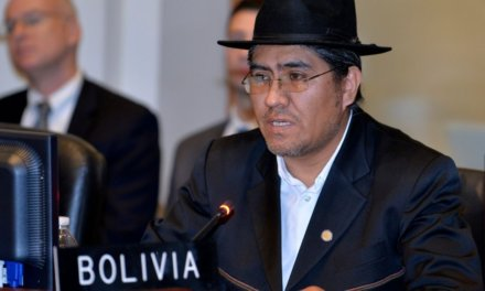 (Bolivia) Gobierno y OEA avanzan lento en ejecución de la auditoría electoral