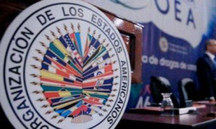 (Bolivia) La OEA publicó los resultados de la auditoría del proceso electoral: estableció que no pude validar los resultados de las elecciones del 20 de octubre