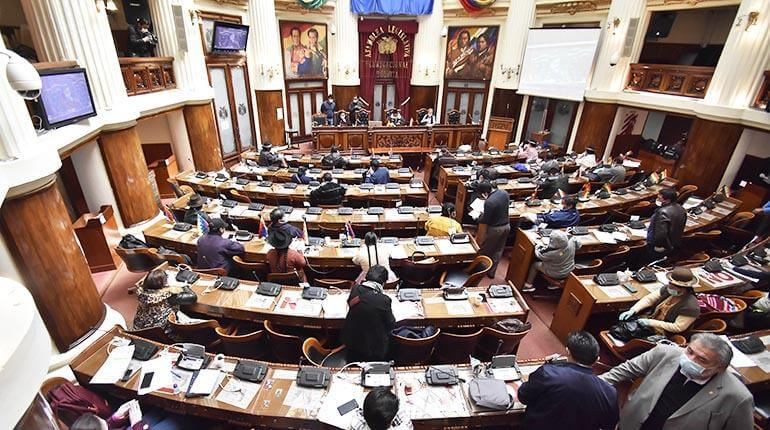 (Bolivia) MAS presiona en Diputados para que las elecciones sean en julio