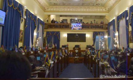 (Bolivia) Senado aprueba ley con nuevo plazo para elecciones y fija proceso penal para quien intente modificar la fecha de los comicios