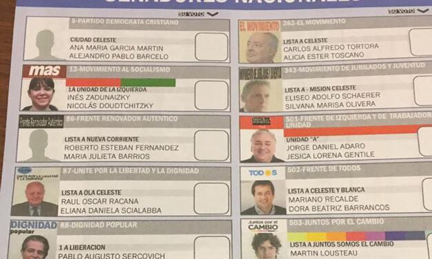 (Argentina) Más de 30 organizaciones de la sociedad civil pidieron implementar la boleta única de papel